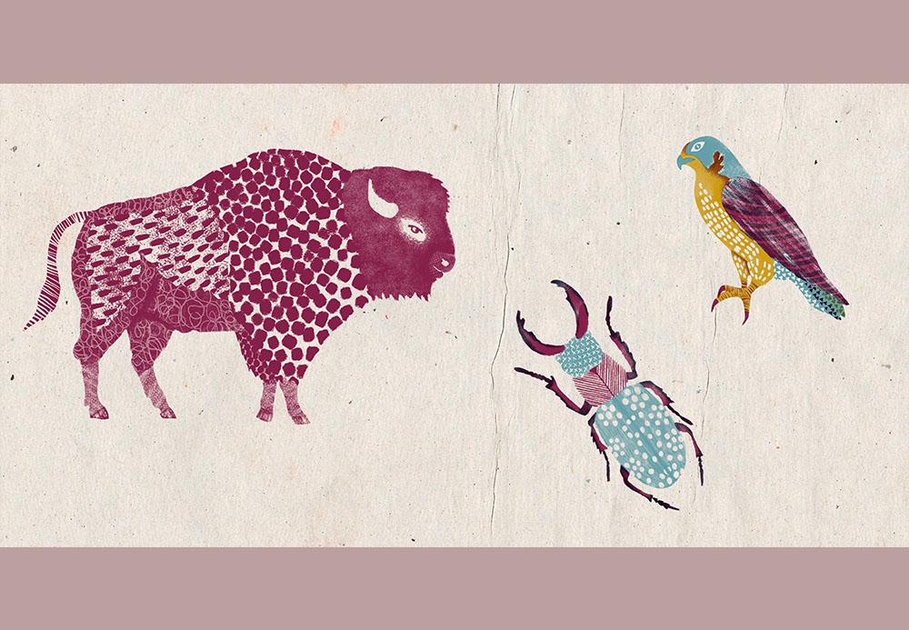ilustracion-animales-tampones